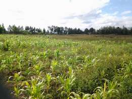 1 Acre for sale in Rumwe, Njoro Township