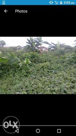 10 acres of land for sale at ngor okpala along owerri road IMO state Port Harcourt - image 1