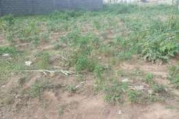 Cheap land for sale in Dakwa