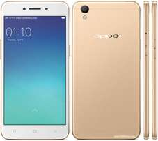 Oppo A37 16 Gb mem and 2Gb ram in a shop Brand new phone
