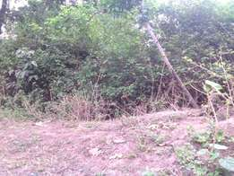 1/8 acre land, 600m withing Siakago Town