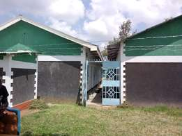 Double Rooms houses for rent