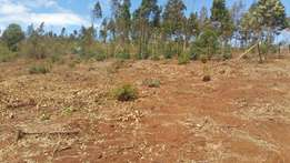 1/8 of an acre for sale in Gikambura Kikuyu Kiambu
