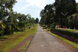 2.5 Acres Land for Sale in Kitisuru, Touching Ngecha road at 350M
