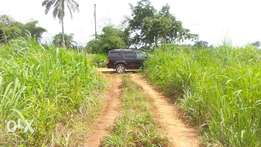 20 plots for sale in Amawbia