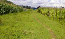 Plot for sale in Lanet 100 metres from tarmac