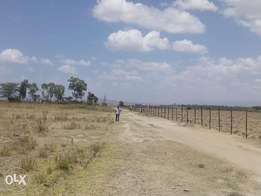 Mutaita - 5- Acres Quick sale