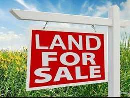 Land For Sales Half Plot Close To Road In Ajah at Badore