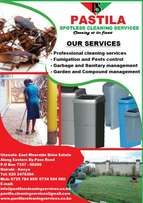 Professional Cleaning Services, Fumigation and Pests control services