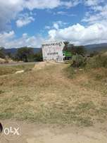 2 by 1/8 plots at Mai mahiu