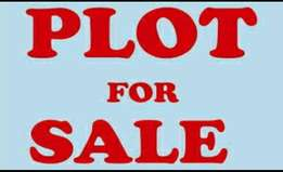 A strategic plot of land in pangani for sale