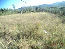 One and a quarter acre Land for sale
