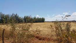 One acre kuinet 800metres from tarmac with title