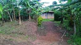 Plot of land for sale in Busoro, Fort portal at 20 Millions.