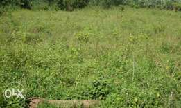 2 Plots Of Land For Sales At Onibueja Estate, Osogbo, Osun state