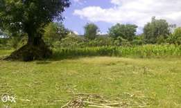 Plot for sale in Milimani Nakuru (1.2 acres)