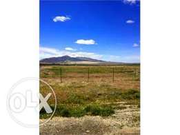 Tuala Rangau Land for sale - 1 Acre