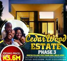 Own a plot of land or more in free trade zone axis