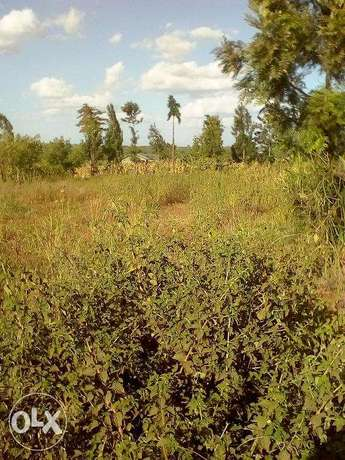 Juja 100x100 1/4 acre plots for sale Ruiru - image 1