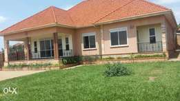 A house in najjera for quick sale at 506m
