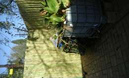 black wattle and bamboo wooden screens for sale