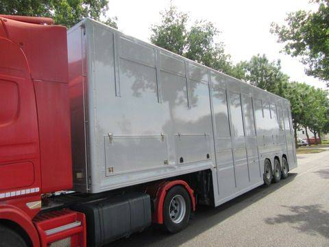 Gray and Adams  Companjen Cattle Carrier - 2007