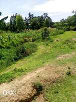 A 1/2 acre land for sale in Siaya