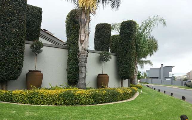 Landscaping, Gardening, Ruble Removal, Tree felling, Plumbing & others Glenvista - image 3