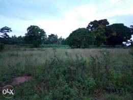 1 Acre Land for Sale- Suitable for farming or private residence