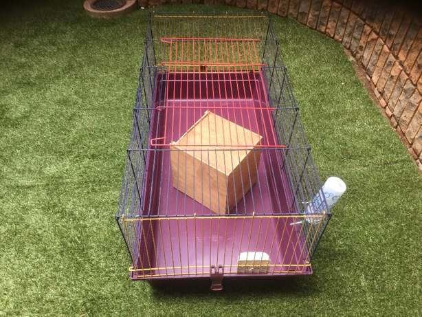 Large cage for small animals Pretoria East - image 4