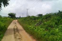 Approved Agricultural Land