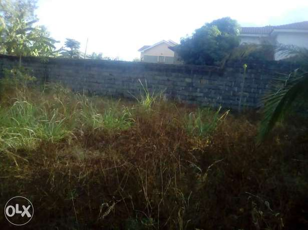 Plot for sale in kanini farm(shalom estate) juja Thika - image 3