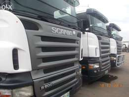 Scania horse for sale