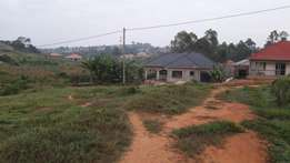 Plots in Namugongo sonde