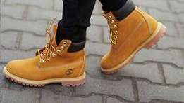 6month old size 10 timberland