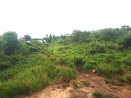 170 Acres of land at Papa Ifo, Ewekoro LGA of Ogun State.