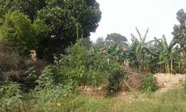 BUKOTO: 18 decimals for sale at 300m about 250 metres from tarmac