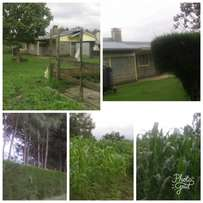 FULLY DEVELOPED HOME ON SALE In Nyahururu,Gatimu area,next to 'suera flowers' farm,1km from the tarmac. 4 bedroomed house,