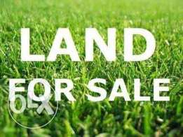 A plot of land for sale beside UNIOSUN campus in Osogbo, Osun State.