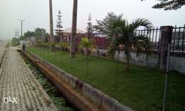 1600sqm Land, Already Interlocked, Gated And Fenced With C of O