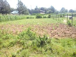 Clean 50×100 plot located afew metres from bungoma-mumias road