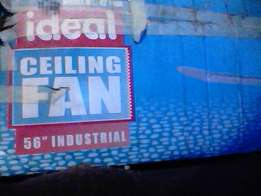 Indistrill fans 3 need to sell brandnew