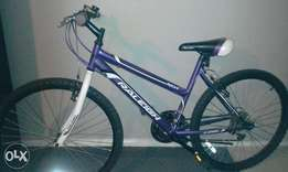 purple and white Raleigh moutain bike