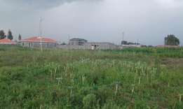 Plot for sale kiamunyi zaburi/canaan