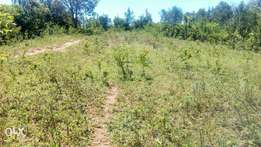 Interested to own a nice fertile land.Hurry! Hurry!Its a nice one!! !!