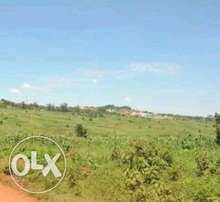 50 acres of land for sale
