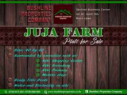 Prime plots for sale in juja farm.