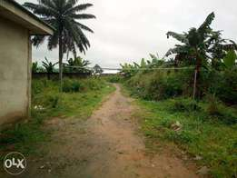 1 plot of land at eleme