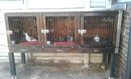 Pigeon Loft for sale
