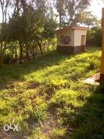 Buy buy buy good land muranga 2.2m
